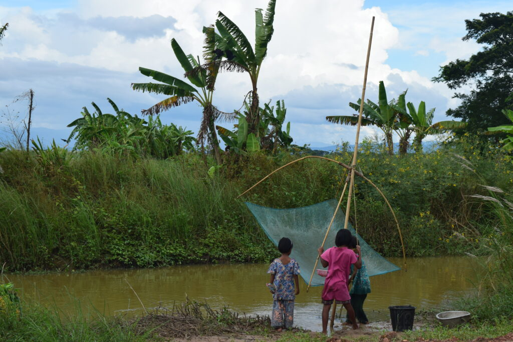 Kids fishing with a basket net in Myanmar