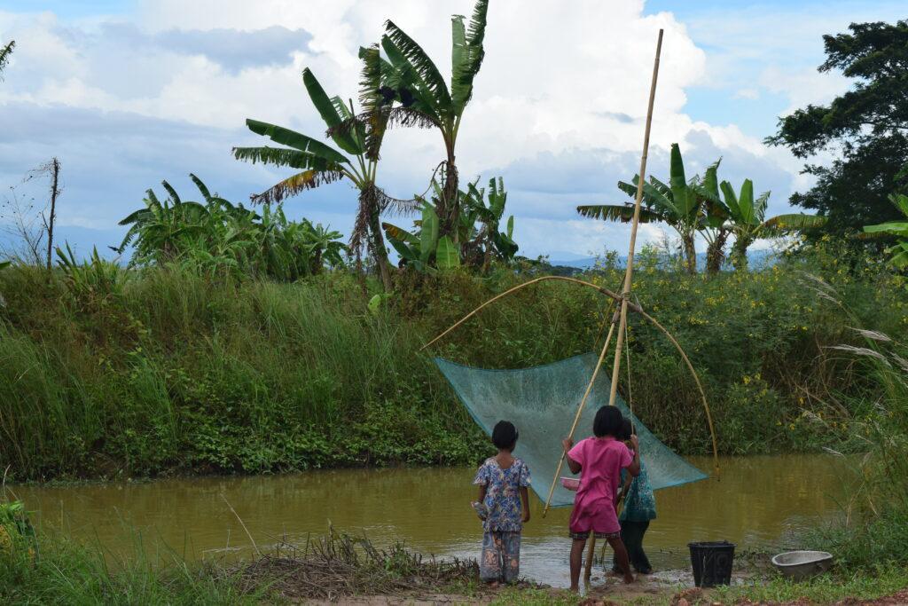 Kids fishing with a basket net in Myanmar