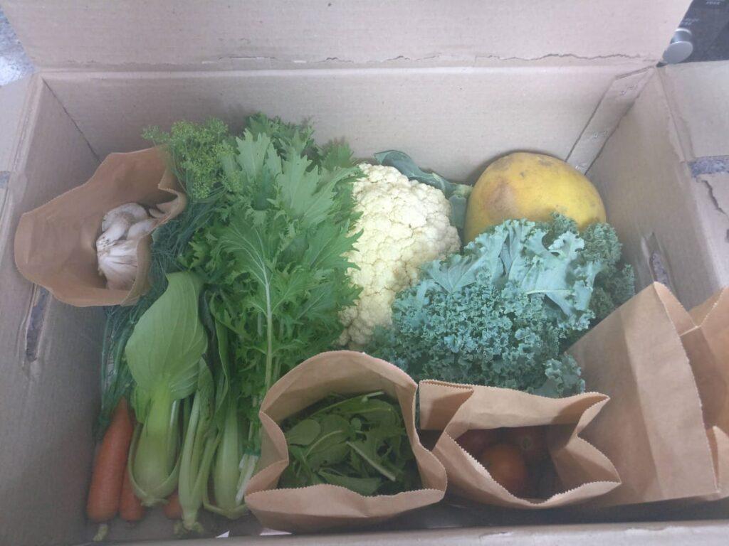 box of organic green vegetables, fruit, cauliflower, etc